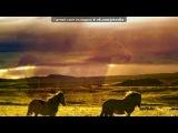 «Основной альбом» под музыку Татьяна и Сергей Никитины - Но только лошади летают вдохновенно. Picrolla